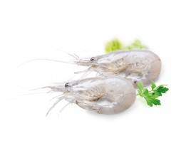 Deep frozen raw shrimp